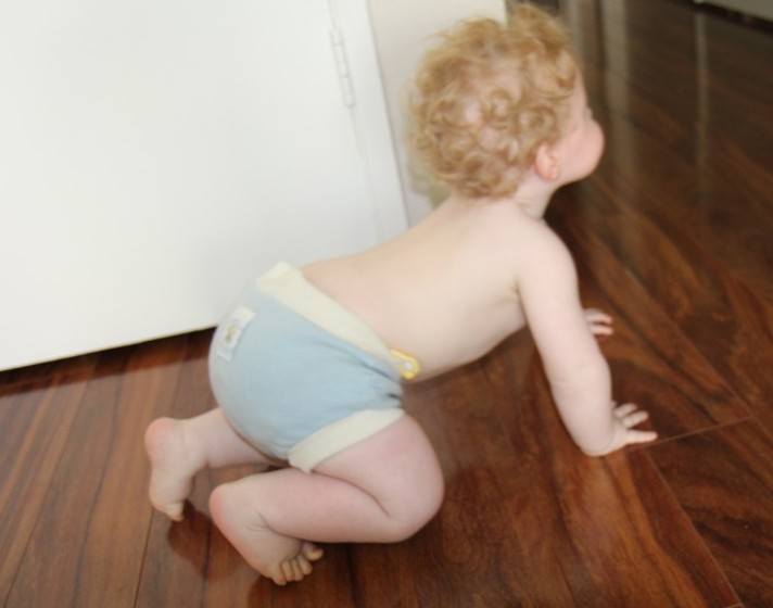 Review: Wool Diaper Covers with Tips and Coupons ...